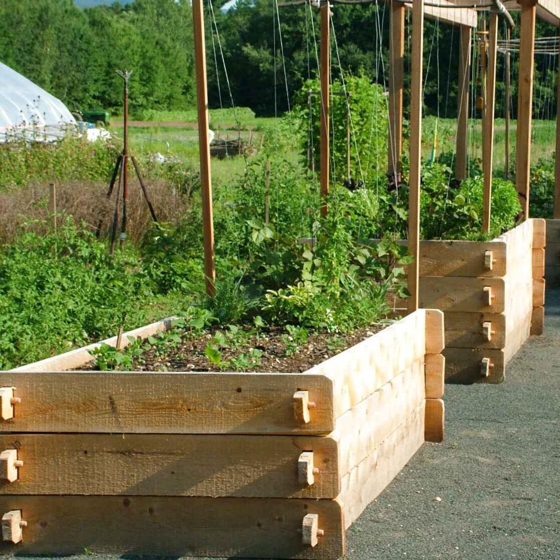 Vidaxl Raised Garden Bed With Greenhouse Weather Resistant Outdoor Lawn Backyard Patio Flower Planter Pot Box