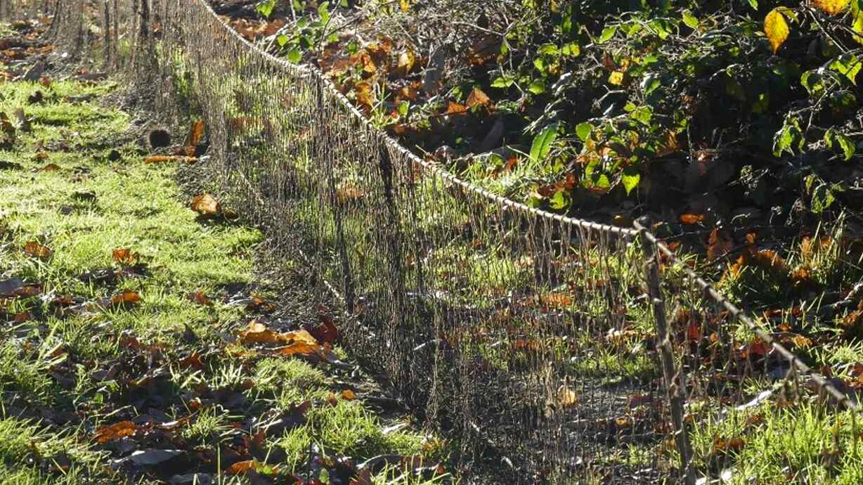 rabbit long nets for sale
