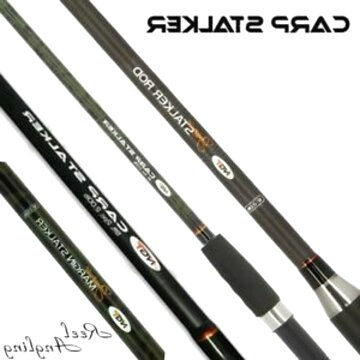 coarse fishing rods for sale