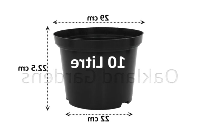 10 litre plastic plant pots for sale